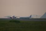 ふるぴーさんが、松山空港で撮影した日本航空 737-846の航空フォト(写真)