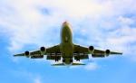 Spiral FLYさんが、千歳基地で撮影した航空自衛隊 747-47Cの航空フォト(写真)