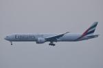 ITM44さんが、関西国際空港で撮影したエミレーツ航空 777-31H/ERの航空フォト(写真)