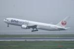 turenoアカクロさんが、羽田空港で撮影した日本航空 767-346の航空フォト(写真)