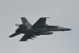 らひろたんさんが、厚木飛行場で撮影したアメリカ海軍 F/A-18E Super Hornetの航空フォト(写真)