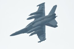 らひろたんさんが、厚木飛行場で撮影したアメリカ海軍 EA-18G Growlerの航空フォト(写真)