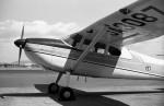 ハミングバードさんが、名古屋飛行場で撮影した日本個人所有 180の航空フォト(写真)