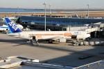 kiraboshi787さんが、羽田空港で撮影した全日空 767-381/ERの航空フォト(写真)