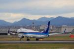 蒲田賢二さんが、伊丹空港で撮影した全日空 737-881の航空フォト(写真)