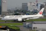Bluewingさんが、羽田空港で撮影した日本航空 787-8 Dreamlinerの航空フォト(写真)