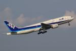 キイロイトリ1005fさんが、羽田空港で撮影した全日空 777-281の航空フォト(写真)