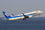 キイロイトリ1005fさんが、羽田空港で撮影した全日空 737-881の航空フォト(写真)