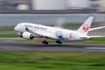 Nao0407さんが、羽田空港で撮影した日本航空 787-8 Dreamlinerの航空フォト(写真)