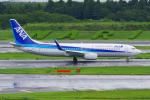 PASSENGERさんが、成田国際空港で撮影した全日空 737-881の航空フォト(写真)