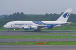 PASSENGERさんが、成田国際空港で撮影したマレーシア航空 A380-841の航空フォト(写真)