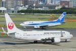 tabi0329さんが、福岡空港で撮影した日本トランスオーシャン航空 737-8Q3の航空フォト(写真)