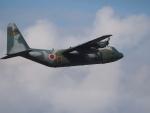 poroさんが、那覇空港で撮影した航空自衛隊 C-130H Herculesの航空フォト(写真)