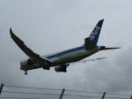 poroさんが、宮古空港で撮影した全日空 787-8 Dreamlinerの航空フォト(写真)
