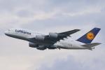 安芸あすかさんが、フランクフルト国際空港で撮影したルフトハンザドイツ航空 A380-841の航空フォト(写真)
