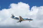 poroさんが、下地島空港で撮影した海上保安庁 Falcon 900の航空フォト(写真)