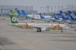 amagoさんが、関西国際空港で撮影したエバー航空 A321-211の航空フォト(写真)
