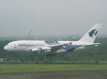 White Pelicanさんが、成田国際空港で撮影したマレーシア航空 A380-841の航空フォト(写真)