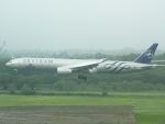White Pelicanさんが、成田国際空港で撮影したKLMオランダ航空 777-306/ERの航空フォト(写真)