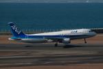 はやたいさんが、中部国際空港で撮影した全日空 A320-211の航空フォト(写真)