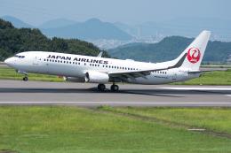 Tomo-Papaさんが、高松空港で撮影した日本航空 737-846の航空フォト(写真)