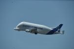 nobu2000さんが、トゥールーズ・ブラニャック空港で撮影したエアバス・トランスポート・インターナショナル A300B4-608STの航空フォト(写真)