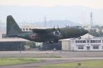 airdrugさんが、名古屋飛行場で撮影した航空自衛隊 C-130H Herculesの航空フォト(写真)