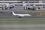 やつはしさんが、羽田空港で撮影したヤーリアン・ビジネスジェット G-IV-X Gulfstream G450の航空フォト(写真)