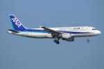 ceskykrumlovさんが、羽田空港で撮影した全日空 A320-211の航空フォト(写真)