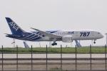 y-dynastyさんが、羽田空港で撮影した全日空 787-8 Dreamlinerの航空フォト(写真)