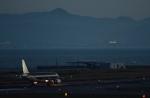 Take51さんが、関西国際空港で撮影したスターフライヤー A320-214の航空フォト(写真)