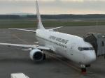 うすさんが、新千歳空港で撮影した日本航空 737-846の航空フォト(写真)