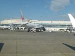うすさんが、新千歳空港で撮影した日本航空 777-289の航空フォト(写真)