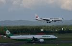 Take51さんが、新千歳空港で撮影したエバー航空 A330-302の航空フォト(写真)