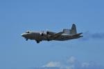 nobu2000さんが、ダニエル・K・イノウエ国際空港で撮影したアメリカ海軍 NP-3D Orionの航空フォト(写真)