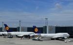 Take51さんが、フランクフルト国際空港で撮影したルフトハンザドイツ航空 A380-841の航空フォト(写真)