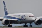 Nikon787さんが、松山空港で撮影した全日空 787-8 Dreamlinerの航空フォト(写真)