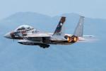pinamaさんが、小松空港で撮影した航空自衛隊 F-15DJ Eagleの航空フォト(写真)