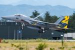 pinamaさんが、小松空港で撮影した航空自衛隊 F-15J Eagleの航空フォト(写真)