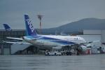 HEATHROWさんが、伊丹空港で撮影した全日空 A320-211の航空フォト(写真)
