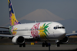Foxfireさんが、羽田空港で撮影したスカイネットアジア航空 737-4H6の航空フォト(写真)