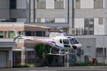 Mizuki24さんが、東京ヘリポートで撮影したグラフィック AS350B2 Ecureuilの航空フォト(写真)