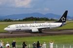 O-TOTOさんが、静岡空港で撮影した全日空 737-881の航空フォト(写真)