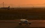 Take51さんが、関西国際空港で撮影した山東航空 737-85Nの航空フォト(写真)