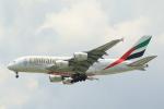 NH642さんが、スワンナプーム国際空港で撮影したエミレーツ航空 A380-861の航空フォト(写真)
