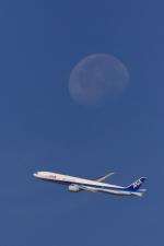 リクパパさんが、伊丹空港で撮影した全日空 777-381/ERの航空フォト(写真)