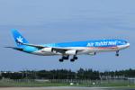 だびでさんが、成田国際空港で撮影したエア・タヒチ・ヌイ A340-313Xの航空フォト(写真)