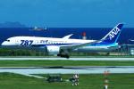 Double_Hさんが、那覇空港で撮影した全日空 787-8 Dreamlinerの航空フォト(写真)