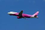 カメラマンあきさんが、新千歳空港で撮影したピーチ A320-214の航空フォト(写真)