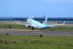 TAKAHIDEさんが、新潟空港で撮影した大韓航空 737-9B5/ER の航空フォト(写真)